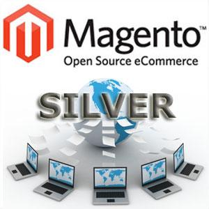 Silver Magento Transactional Website Design Package