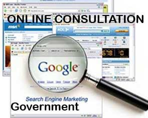 Government Online Strategy Consultation