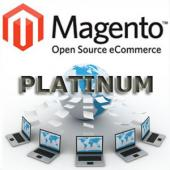 Platinum Magento Transactional Website Design Package
