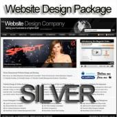 Silver Website Design and Hosting